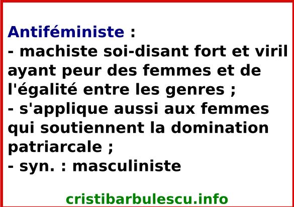antiféministe masculiniste